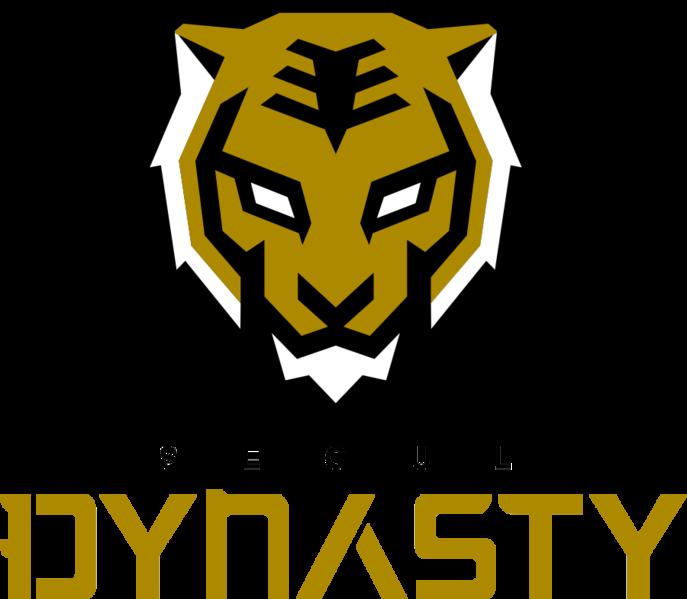 Seoul Dynasty Overwatch