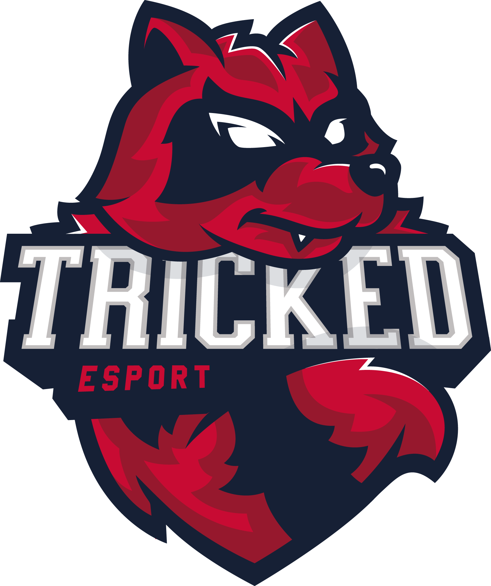 Tricked Esport CS:GO