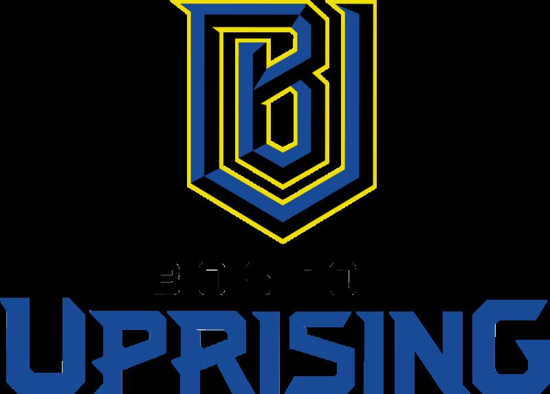 Overwatch Boston Uprising
