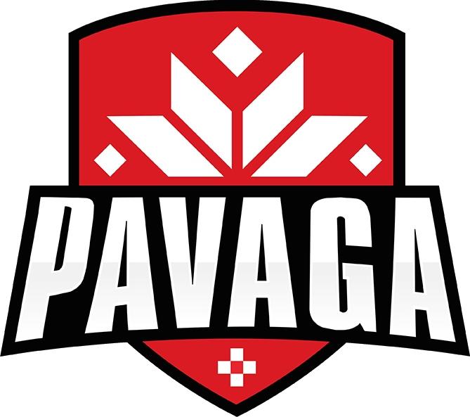Pavaga Gaming Logo Dota 2