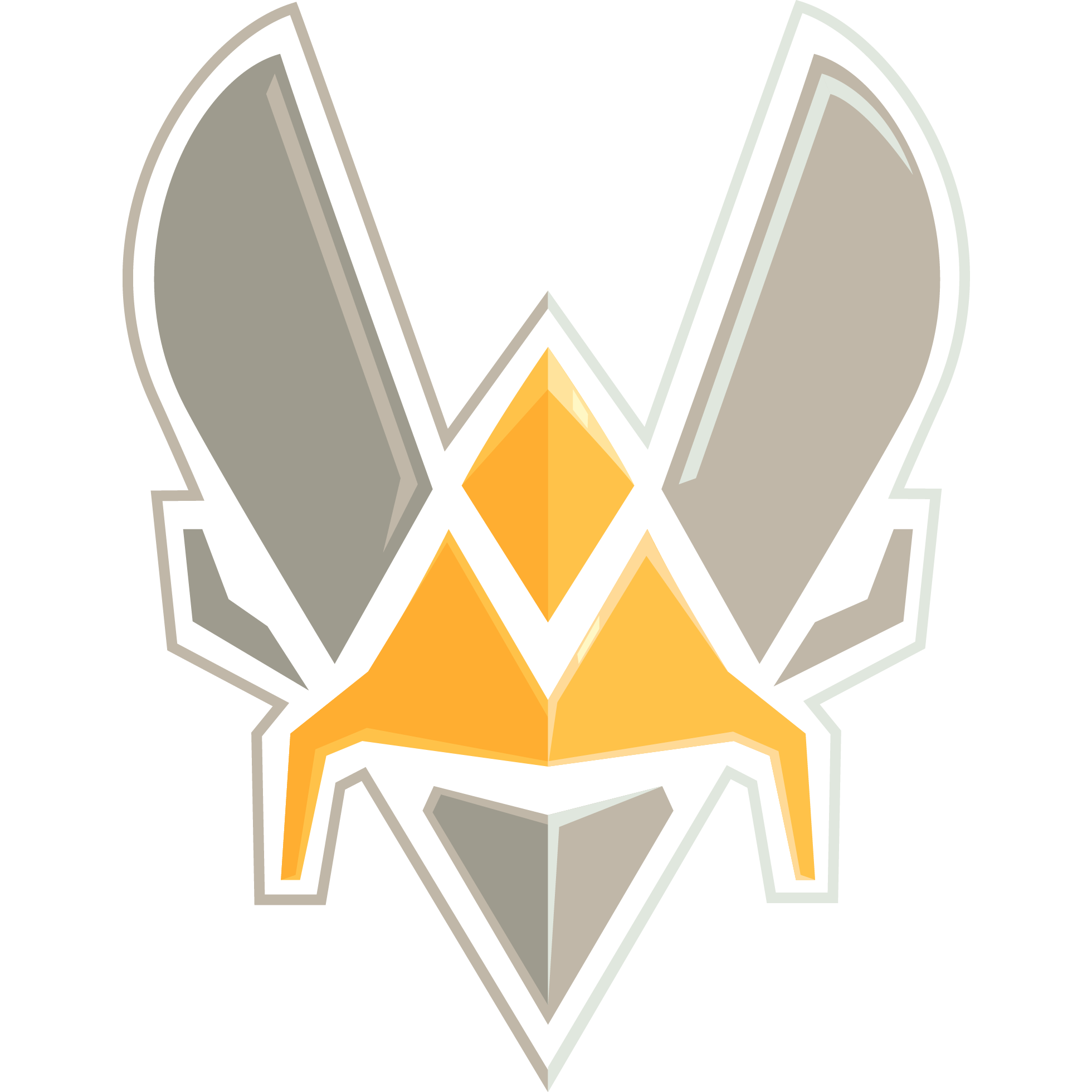 Team Vitality CS:GO