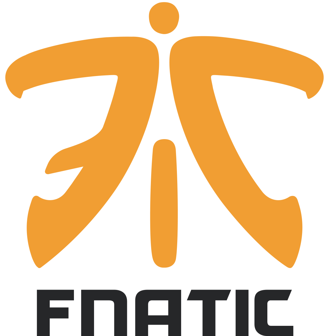 Fnatic CS:GO