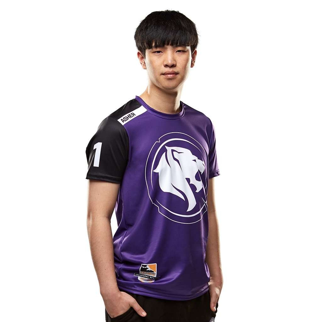 Asher Toronto Defiant Overwatch Jun-sung Choi