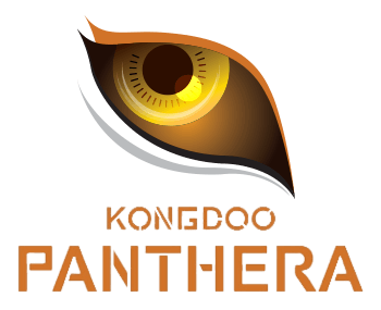 KongDoo Panthera Overwatch
